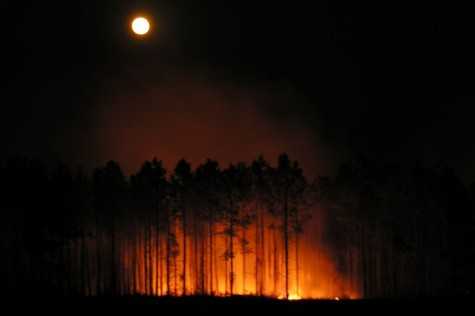 moon-and-fire