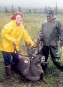 palin-caribou